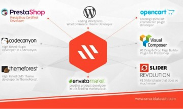 A certified web agency SmartDataSoft, full paced themes and plugins development company